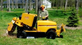 How Can a Stump Grinder Help You?